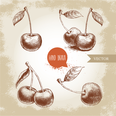 etched: Hand drawn cherry set isolated on vintage background.Retro sketch style vector eco food illustration Illustration