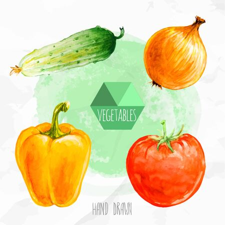 bell tomato: Watercolor hand painted vegetables set. Eco food illustration. Watercolor green background. Cucumber, onion, bell paper and ripe tomato.