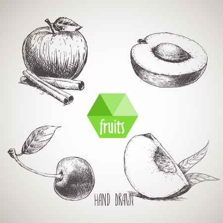 sketch style fruits set. Apple with cinnamon sticks, half of apricot, cherry and quarter of peach. Organic food, farm fresh fruit. Vintage style illustration