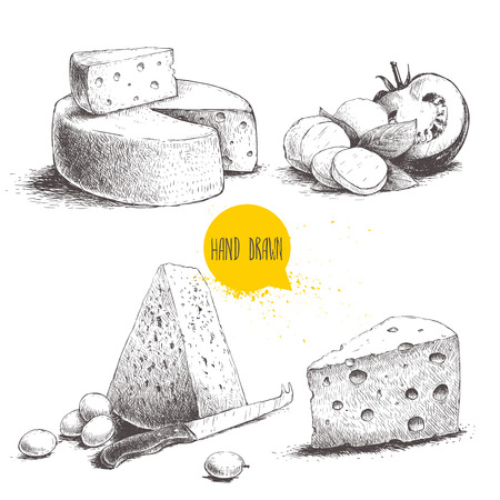 Hand drawn different type of cheese set. Edam, mozzarella cheese with basil leafs and tomato, round cheese head, triangle of cheese. Vector organic food illustration. Stock Illustratie