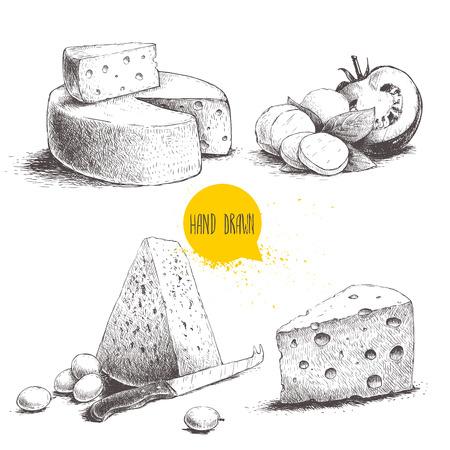 Ręcznie rysowane inny rodzaj sera. Edam, ser mozzarella z listkami bazylii i pomidorem, okrągła główka sera, trójkąt sera. Ilustracja wektorowa żywności ekologicznej.