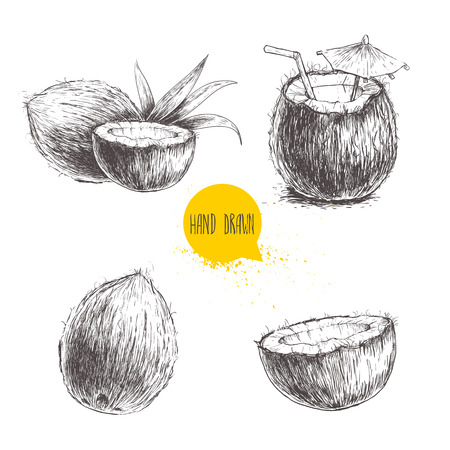 coconut drink: Hand drawn coconut set. Cocktail isolated on white background. Illustration