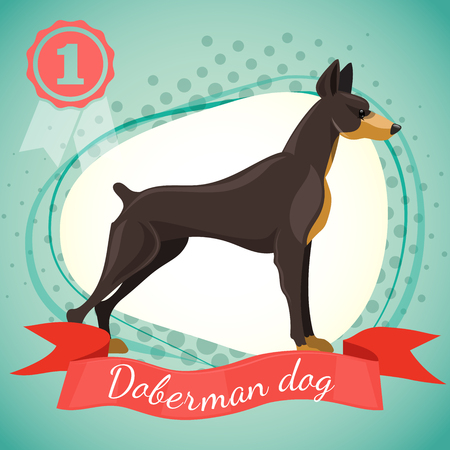 doberman: illustration of doberman pinscher dog. Best in show dog, champion. Half tone background with red ribbon and medal.