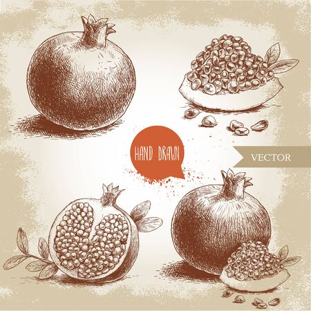 Hand drawn organic pomegranates set. Pomegranates with seeds and leafs. Sketch style vector illustration Illustration