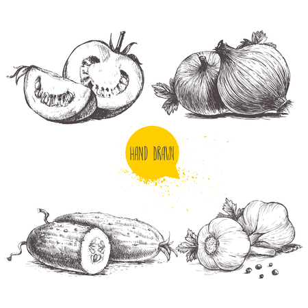 Hand drawn sketch style vegetables set. Sliced tomatoes, onions, cucumbers and garlics. Imagens - 72968661