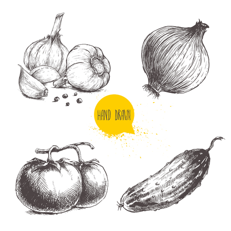 Hand drawn sketch style vegetables set. Tomatoes, onion, cucumber and garlics with pepper. Иллюстрация
