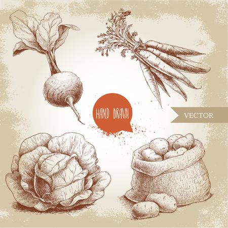 手描きスケッチ スタイルの野菜セット。キャベツ、ビートの根、葉、ジャガイモとニンジンの束が付いている袋。グランジ ビンテージ背景のファー  イラスト・ベクター素材