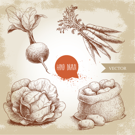 Hand drawn sketch style vegetables set. Cabbage, beet root with leafs, sack with potatoes and bunch of carrot. Farm fresh food on grunge vintage background. Çizim