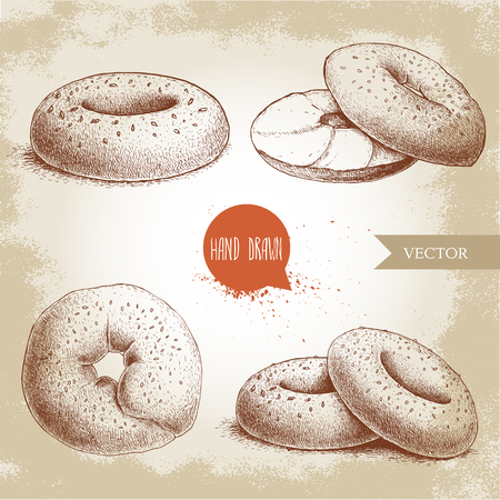 Hand drawn sketch style sesame bagels set. Bagel, sliced bagel with cream cheese. Daily fresh bakery illustration. Vintage drawing of fresh breakfast.
