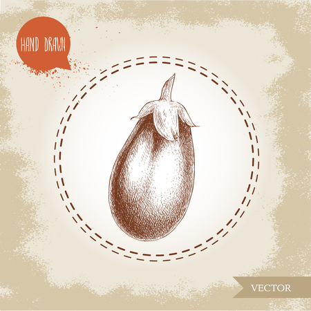 intact: Hand drawn sketch style eggplant illustration. Vector food ecological artwork.