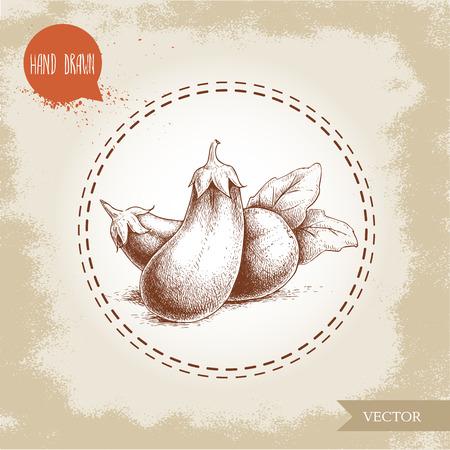 Hand drawn sketch style eggplants with leaves illustration. Vector food ecological artwork. Illustration