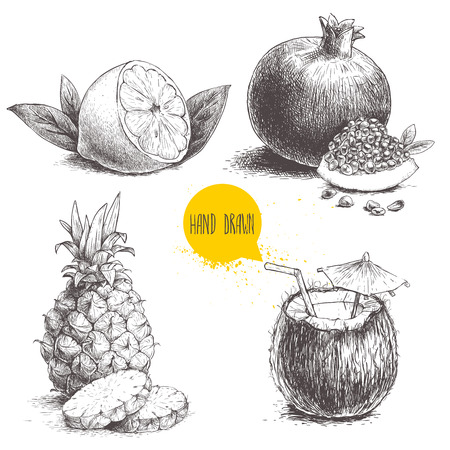 Hand drawn sketch style tropical fruits set isolated on white background. Half of lemon with leaf, coconut cocktail, pineapple with slices and pomegranates with seeds. Tropic food illustration.