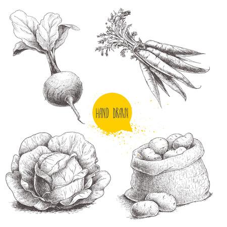 Hand gezeichnet Skizze Stil Gemüse gesetzt. Kohl, Rübenwurzel mit Blättern, Sack mit Kartoffeln und Karottenbrot. Bauernhof frische Lebensmittel isoliert auf weißem Hintergrund.