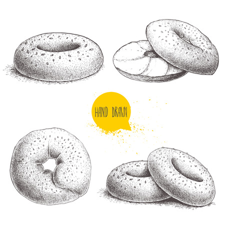 Hand drawn sketch style sesame bagels set isolated on white background. Bagel, sliced bagel with cream cheese. Daily fresh bakery illustration.