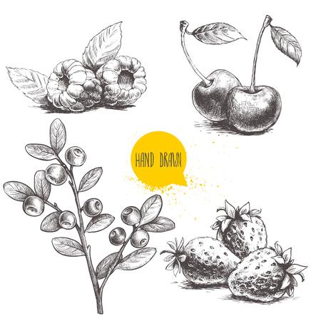 Hand gezeichneter Skizzenart-Beerensatz lokalisiert auf weißem Hintergrund. Himbeere mit Blättern, Erdbeeren, Kirsche und Blaubeeren verzweigen sich. Gesunde Frucht- und Beerenvektorillustration.