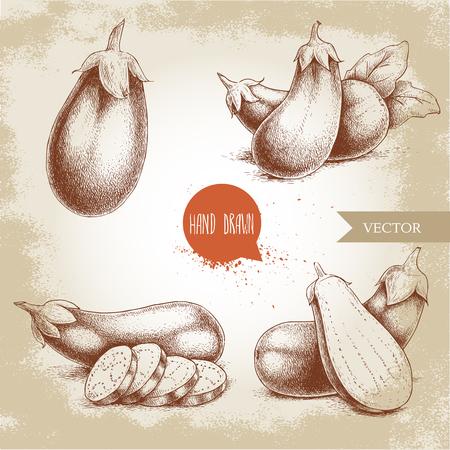 intact: Hand drawn sketch style fresh eggplants. Fresh eggplant and sliced eggplant.Vintage illustration of healthy fresh organic food. Illustration