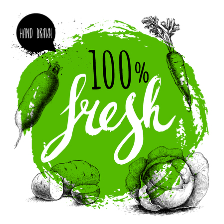 Farmer 100% fresh veggies design template. Green rough circle with hand painted letters. Engraving sketch style vegetables. Potatoes, carrotwith leafs, beet root and cabbage. Hand drawn design.