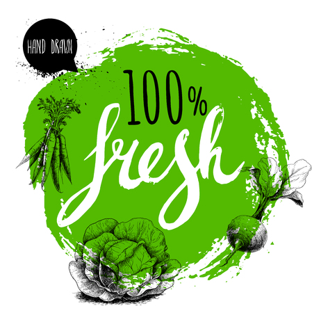 Modello di design di verdure fresche 100% Farmer. Cerchio grezzo verde con lettere dipinte a mano. Incisione di verdure stile schizzo. Mazzo di carote, radice di barbabietola con foglie e cavolo. Disegno disegnato a mano. Archivio Fotografico - 76732515