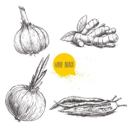 De hand getrokken vastgestelde illustratie van de schetsstijl van verschillende die kruiden op witte achtergrond wordt geïsoleerd. Knoflook, gemberwortel, ui en roodgloeiende chilipepers. Vector Illustratie
