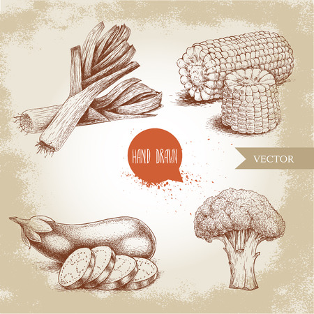 Hand drawn sketch style vegetables set. Leek with slices , eggplant with sliced aubergine, broccoli and sweet corn maize. Farm fresh food on grunge vintage background. Stok Fotoğraf - 76944997