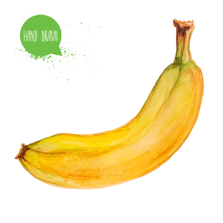 Hand drawn and painted watercolor ripe banana Banco de Imagens
