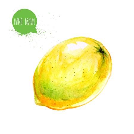 Hand drawn and painted watercolor ripe lemon