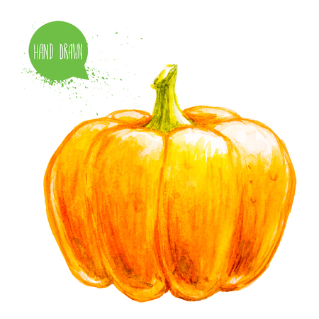 Hand drawn and painted watercolor ripe pumpkin