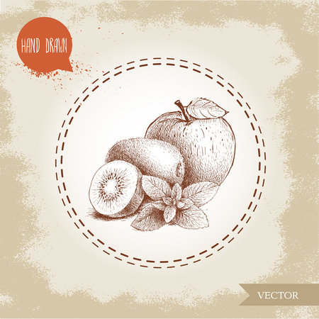 hand drawn sketch style healthy fruits. Apple, kiwi fruits and mint branch. Eco fruit vector illustration. Healthy fruits and herbs. Illustration