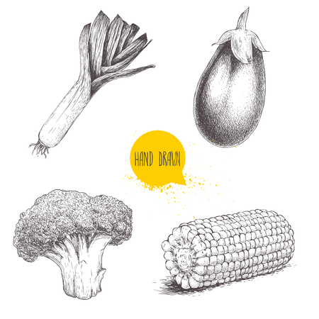 Hand drawn sketch style vegetables set. Leek, eggplant, broccoli and sweet corn slice. Farm fresh food isolated on white background.