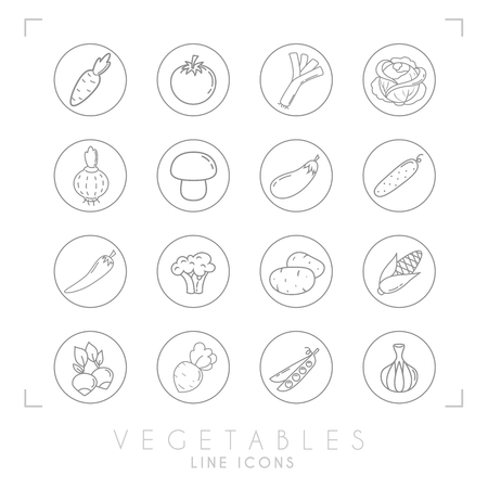 Set of line vegetable icons in line circles. Flat style. Carrot, tomato, leek, cabbage, onion, mushroom, eggplant, cucumber, pepper, broccoli, potato, corn, radish, beet root, peas, garlic. Ilustração
