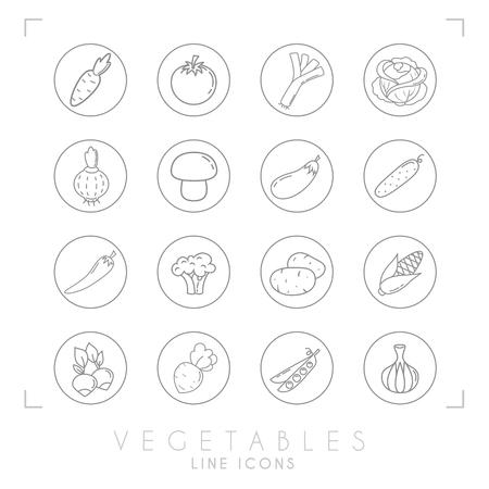 Set of line vegetable icons in line circles. Flat style. Carrot, tomato, leek, cabbage, onion, mushroom, eggplant, cucumber, pepper, broccoli, potato, corn, radish, beet root, peas, garlic. Illustration