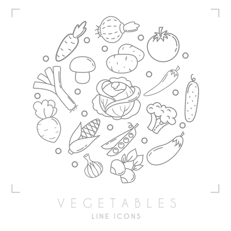 Set of line vegetable icons. Carrot, tomato, leek, cabbage, onion, mushroom, eggplant, cucumber, pepper, broccoli, potato, corn, radish, beet root, peas, garlic.