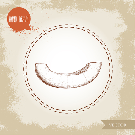 Hand drawn sketch style illustration of melon slice. Organic food vector illustration.