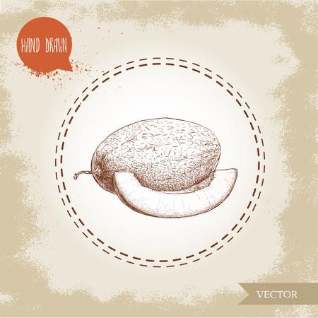 メロンとメロン スライスの手描きスケッチ スタイル イラスト。有機食品のベクトル図です。  イラスト・ベクター素材