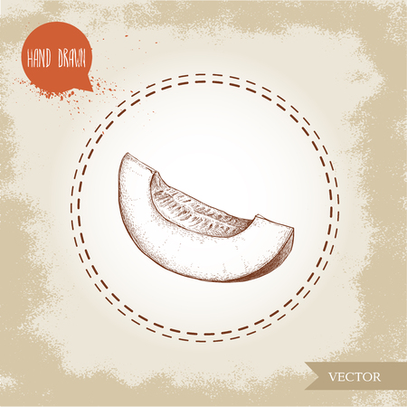 Hand drawn sketch style illustration half of melon slice. Organic food vector illustration. Ilustração