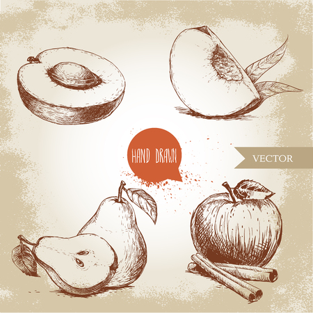 Hand drawn sketch style fruits set. Apricot, peach quarter with leafs, whole pear and half, apple with cinnamon. Eco food vector illustration collection on old background.