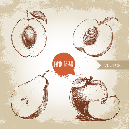 Hand drawn sketch style fruits set. Apricot, peach half with leaf, half pear, apples composition. Eco food vector illustration collection on old background. Ilustração