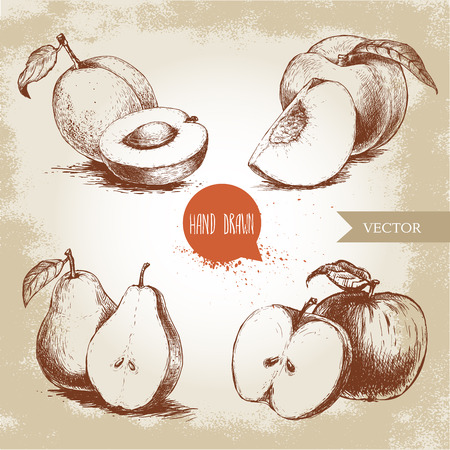 Hand drawn sketch style fruits set. Apricots, peaches, half pears, apples. Eco food vector illustration collection on old background. Ilustração