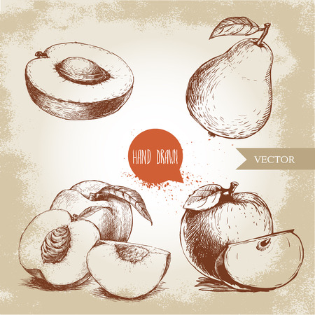 Hand drawn sketch style fruits set. Apricot half, peaches , whole pear, apples. Eco food vector illustration collection on old background. Ilustração