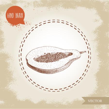 Bergeben Sie gezogene Hälfte der Papayafrucht mit Samen. Skizzieren Sie Artweinlese-Vektorillustration des exotischen Lebensmittels des Sommers. Standard-Bild - 82117628