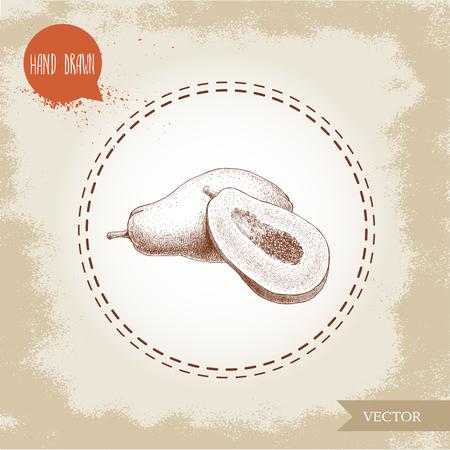 Hand gezeichnete Papaya Frucht Zusammensetzung. Ganze Pawpaw und halb geschnittene Papaya mit Samen. Sketch Stil Jahrgang Vektor-Illustration der Sommer exotische Lebensmittel. Standard-Bild - 82117631