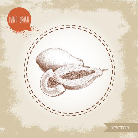 Hand gezeichnete Papaya Obst Zusammensetzung . Ganze halbe Hälfte schneiden Mais mit Samen und Scheibe von Samen . Skizze Vintage-Stil Vektor-Illustration von exotischen Sommer Essen Standard-Bild - 82117632