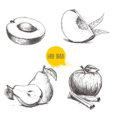 Hand gezeichnete Skizzenartfrüchte eingestellt. Aprikose, Pfirsichviertel mit Blättern, ganze Birne und Hälfte, Apfel mit Zimtstangen. Vektorillustrationsansammlung auf weißem Hintergrund. Vektorgrafik