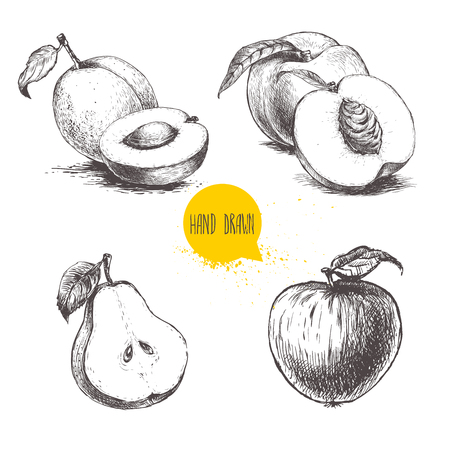Hand drawn sketch style fruits set. Apricots, peaches , half pear, apple. Bio food vector illustration collection isoalted on white background.