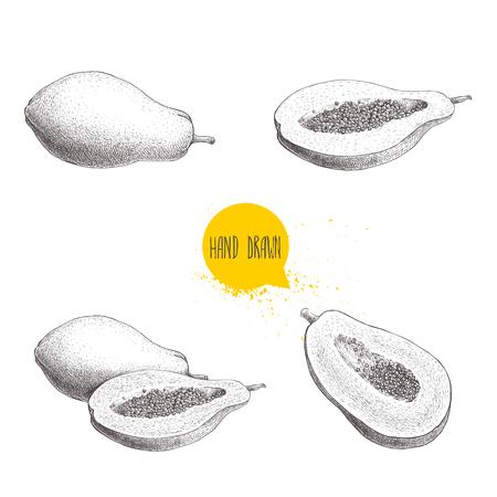 Hand gezeichnete Papayafrüchte eingestellt. Ganze Papaya, halb geschnitten Papaya mit Samen. Skizzenartweinlese-Vektorillustration des exotischen Sommers des Sommers lokalisiert auf weißem Hintergrund. Standard-Bild - 83176029
