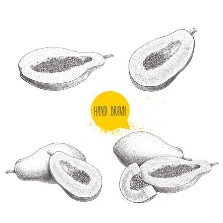Hand gezeichnete Papaya Früchte festgelegt . Ganze Hälfte halb geschnittene Melone mit Samen . Gliederung Vektor Stil der exotischen Frucht isoliert auf weißem Hintergrund Standard-Bild - 83176040