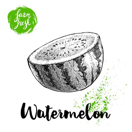 Hand drawn sketch style watermelon half cut vector illustration. Farm fresh fruit isolated on white background. Eco organic food poster. Ilustração