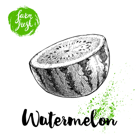 Hand drawn sketch style watermelon half cut vector illustration. Farm fresh fruit isolated on white background. Eco organic food poster. Illustration