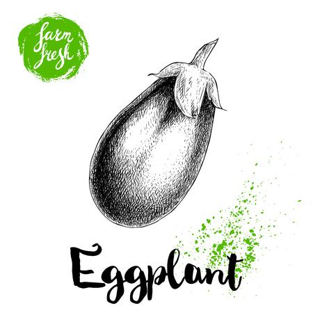 手描きスケッチ スタイル ナスのイラストが白い背景で隔離。ファーム野菜生態学的作品。