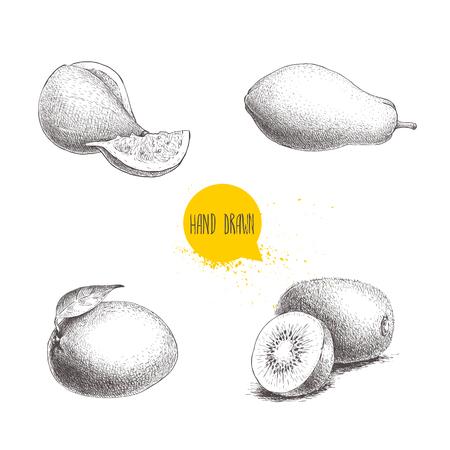 Hand drawn exotic fruits set. Fig fruit, papaya, mango and kiwi fruits. Eco food sketch vector illustration isolated on white background. Illustration
